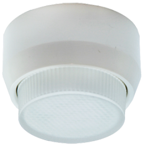 Ecola GX40 DGX40F Светильник накладной белый 30x75